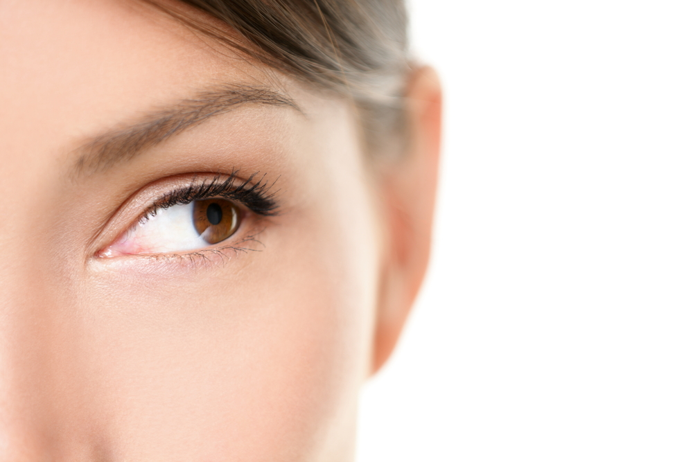 close up brown eye of woman